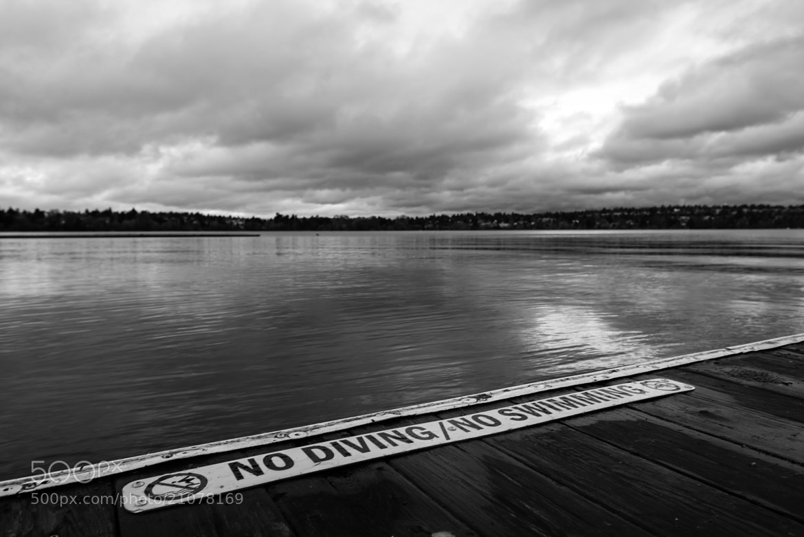Photograph No Diving / No Swimming by Ben Eloy on 500px