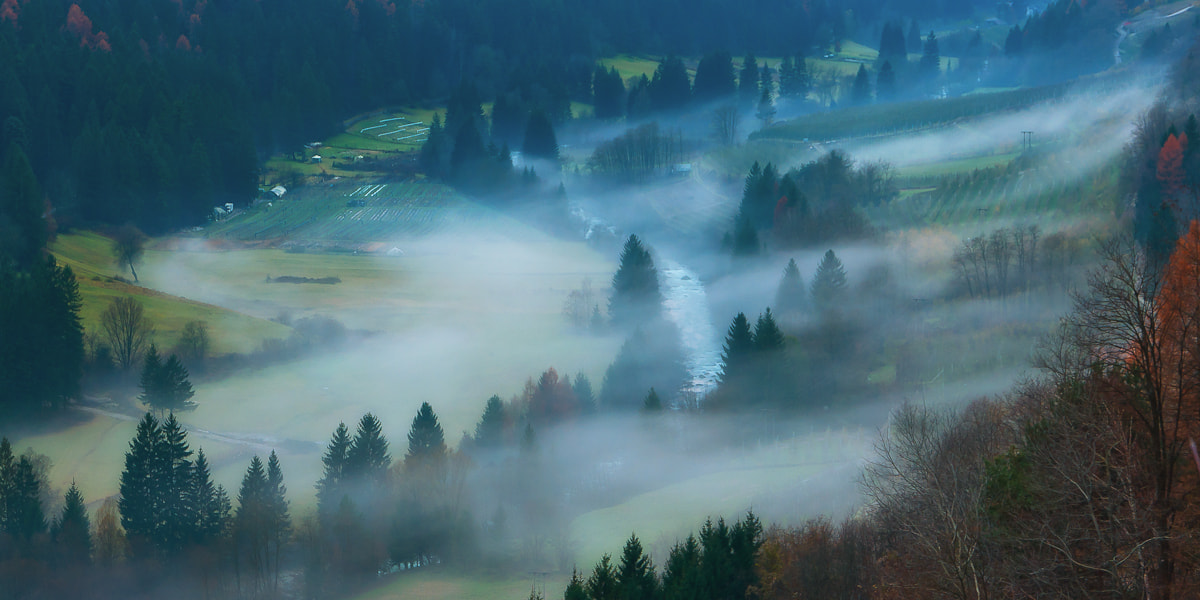 Photograph Misty by Alessio Pellegrini on 500px