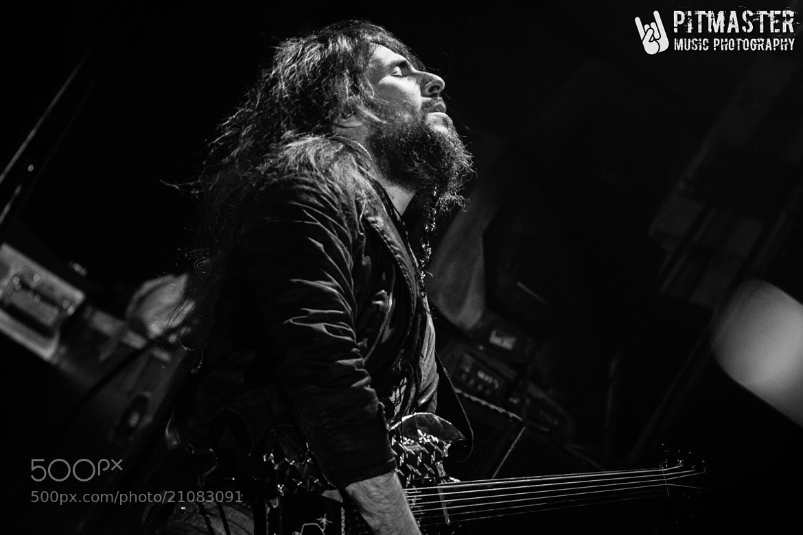 Photograph Bumblefoot by Om Prakash on 500px