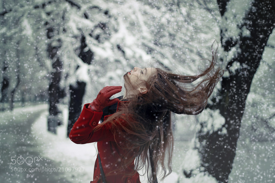 Photograph Winter winds by Maja Top?agi? on 500px