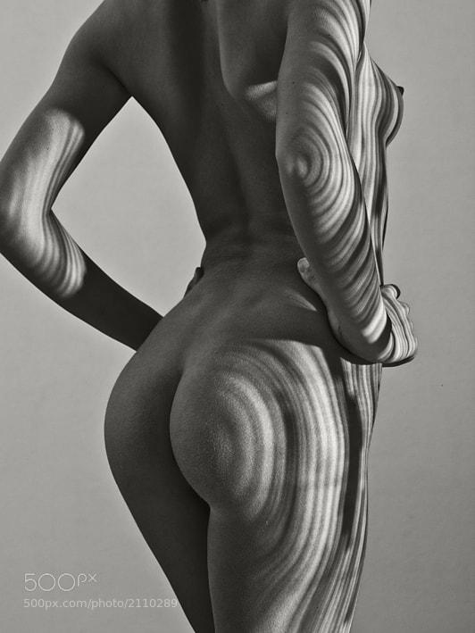 Photograph wooden II by Jochen Dreess on 500px