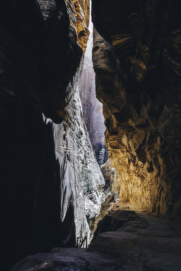 Zion National Park XLVII
