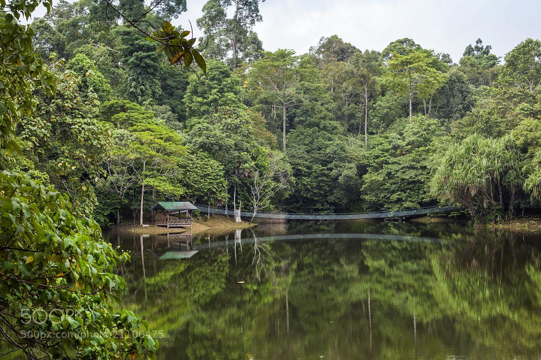 Photograph RDC 1 by Aziz Albumkasih on 500px