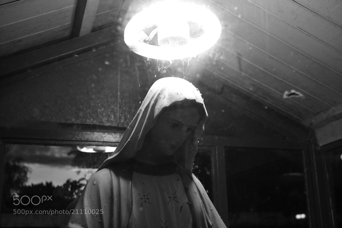 Photograph Virgen Maria by Patricio Fariña on 500px