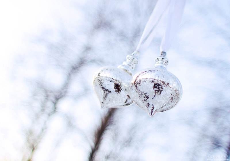 Photograph Christmas is here by Frida Bringslimark on 500px