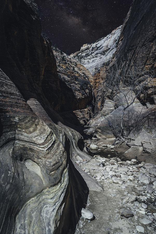 Zion National Park XLIX