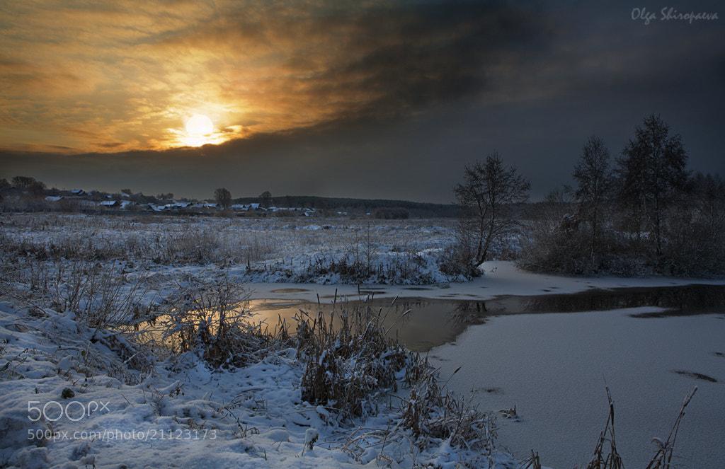 Photograph Morning of winter. by Olga Shiropaeva on 500px