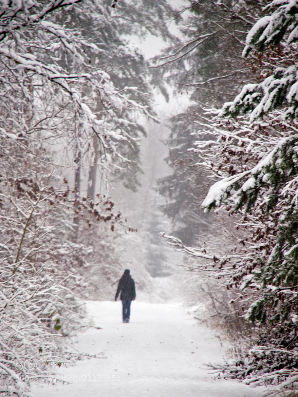 Photograph Snowfall by Michael Lüdtke on 500px