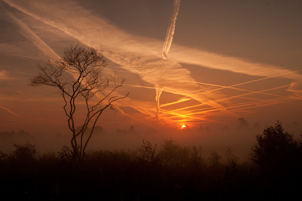 Photograph Another beautiful morning! by Tom  Kruissink on 500px