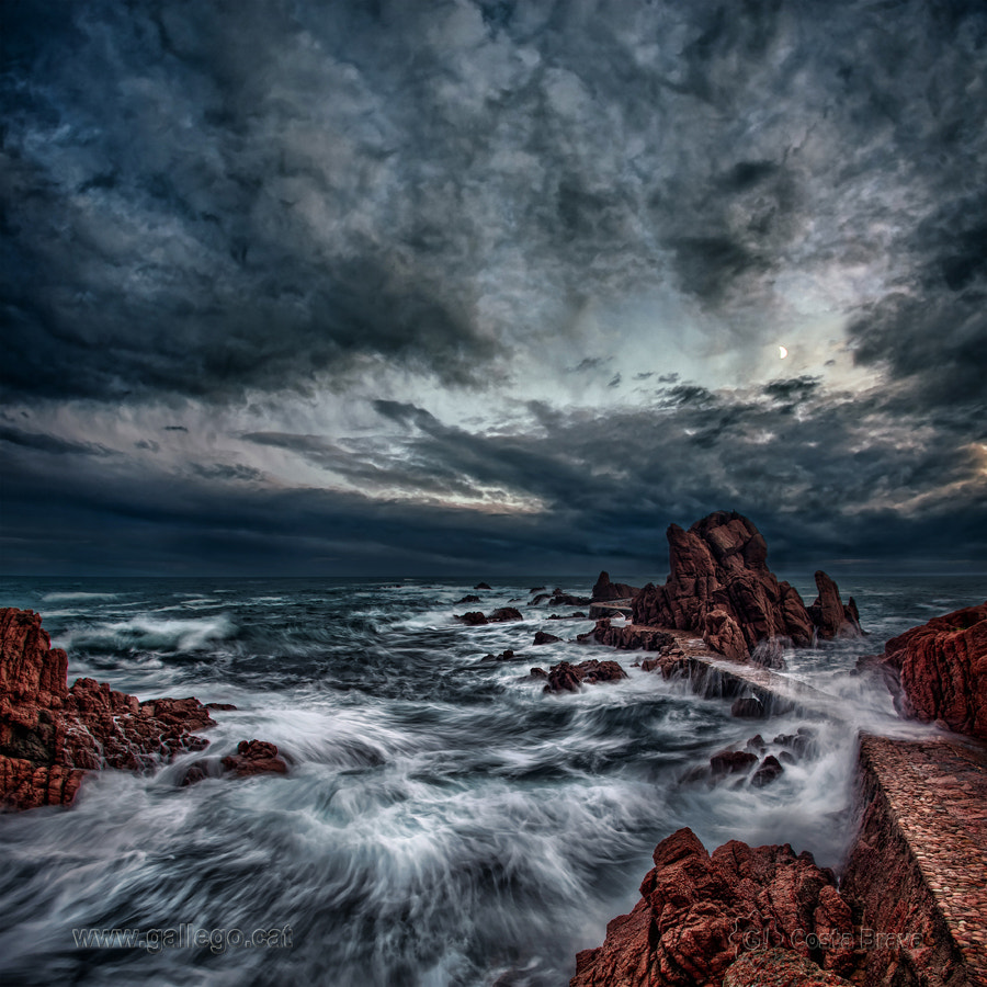 Photograph Costa Brava, live nature 16 by Jordi Gallego on 500px