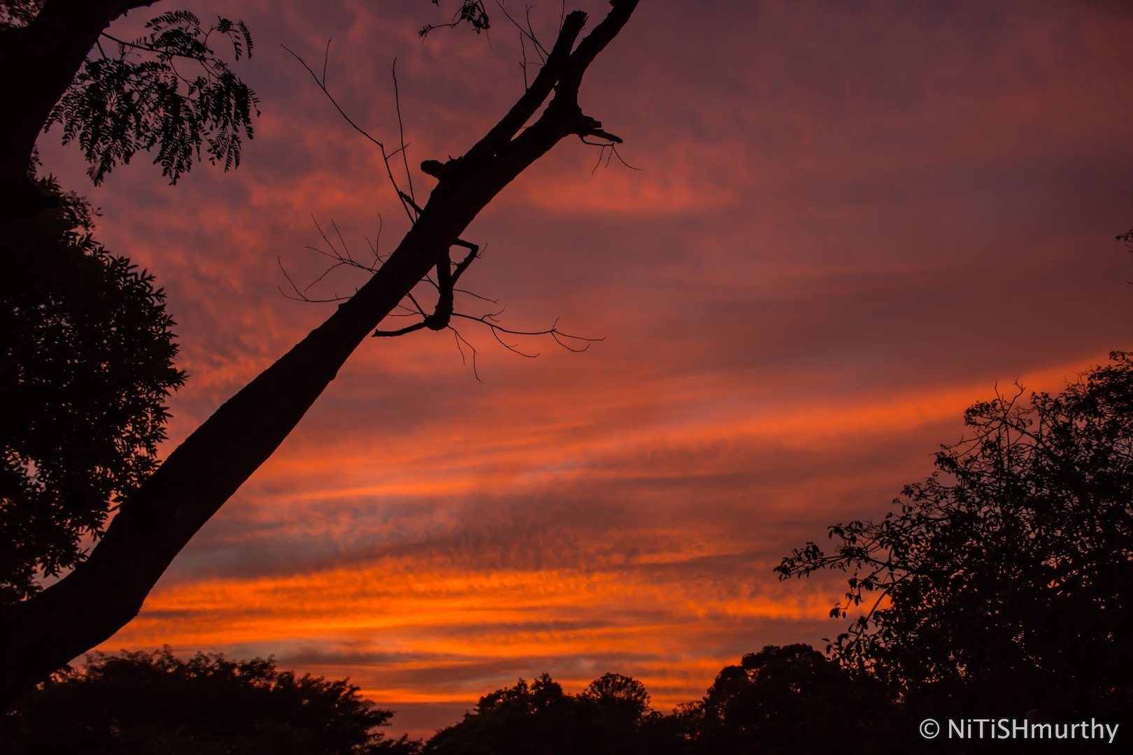 Photograph Fiery Sunset by Nitish Murthy on 500px