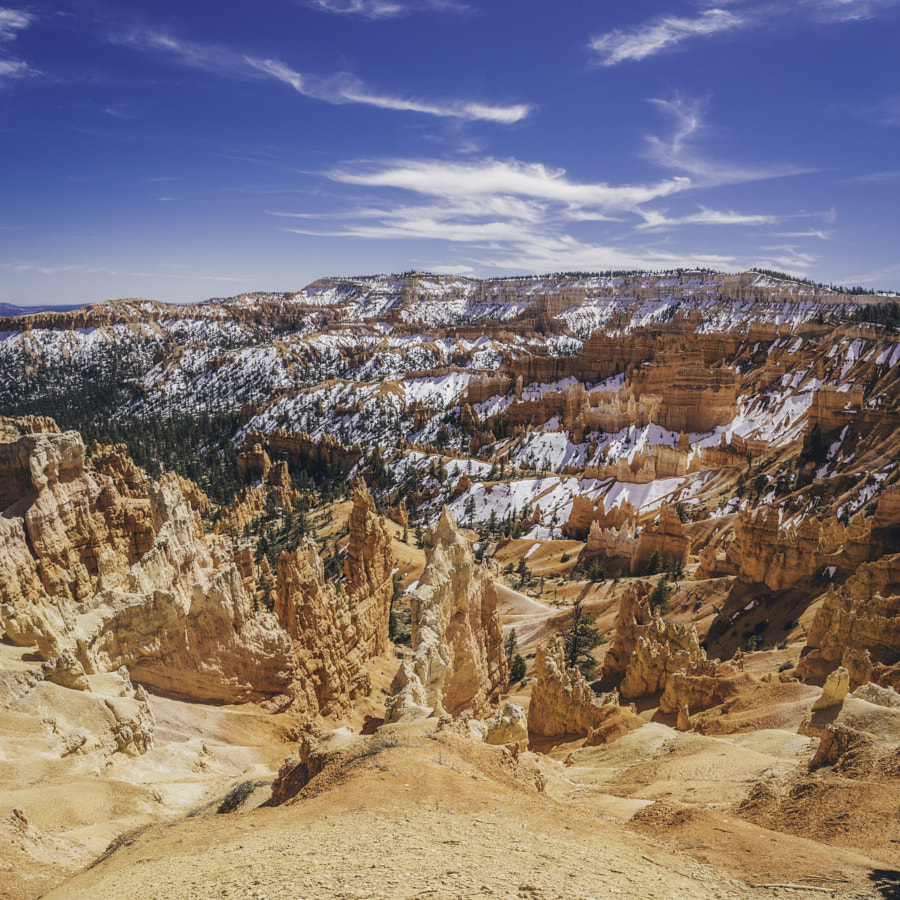 Bryce Canyon National Park IV