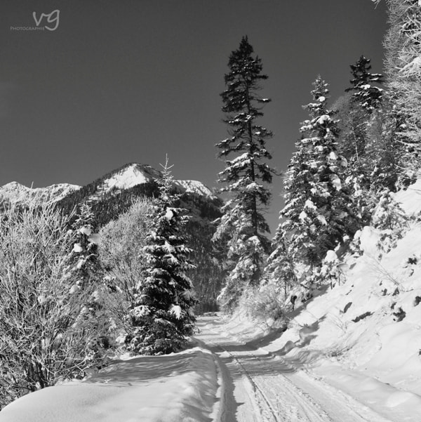 Photograph .road.snow. by Verena G. on 500px
