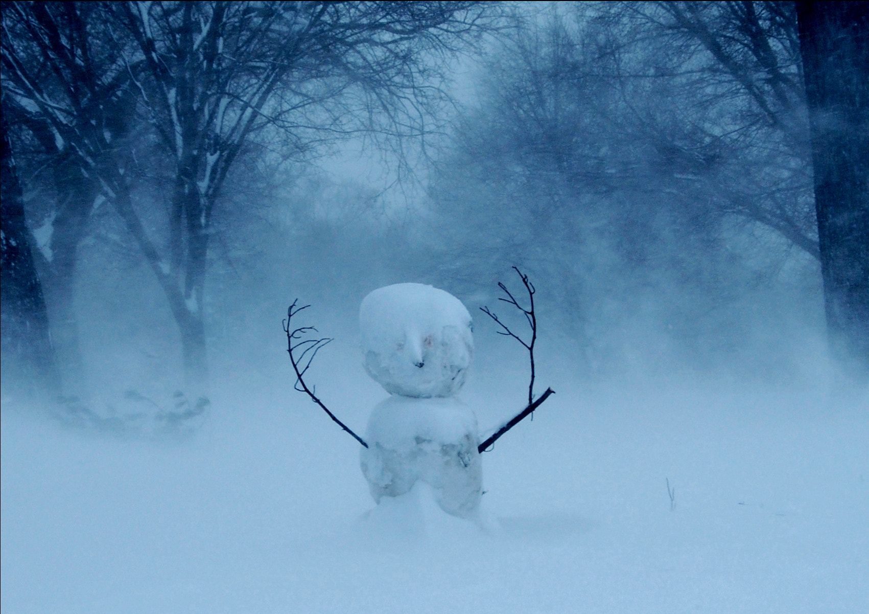 Photograph Snow King by Christy  Turner on 500px