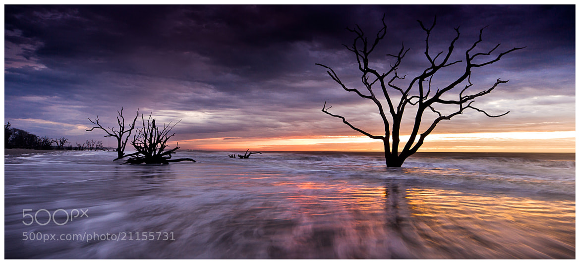 Photograph BOTANY BAY by Jordan Marsh on 500px