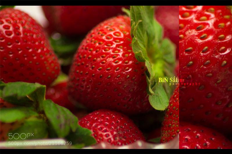 Photograph macro Strawberry by Kamal AL Ghafri on 500px