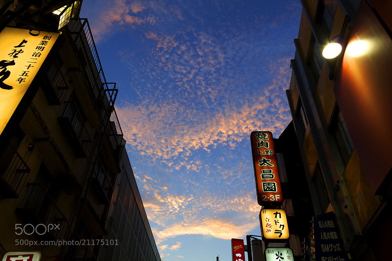 Photograph The sky in Ueno  by Naoki Takizawa on 500px