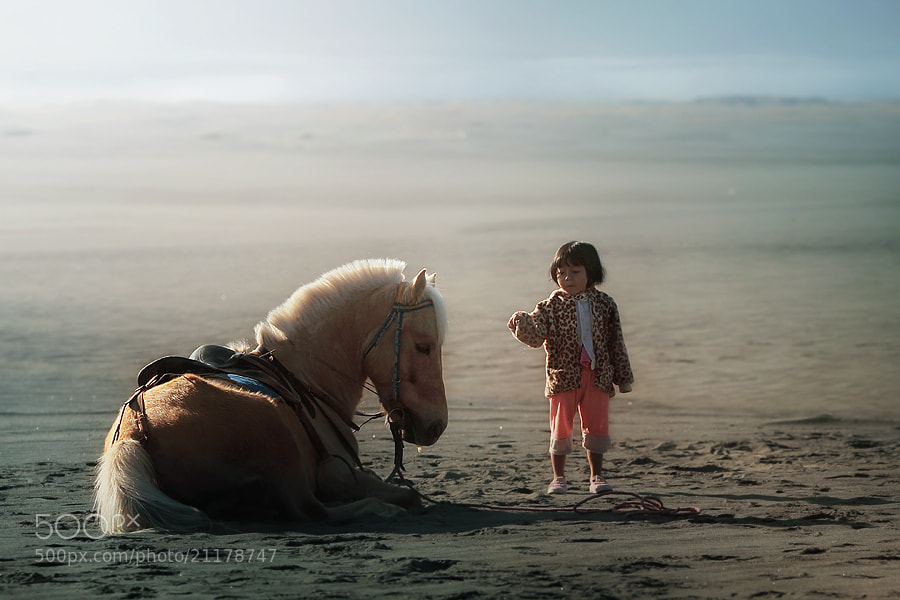 Photograph relax by asit  on 500px
