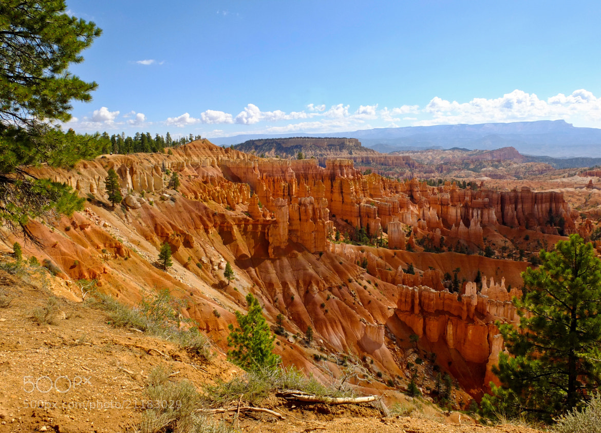 Photograph Bryce Canyon 3 by Manuel Perrone on 500px
