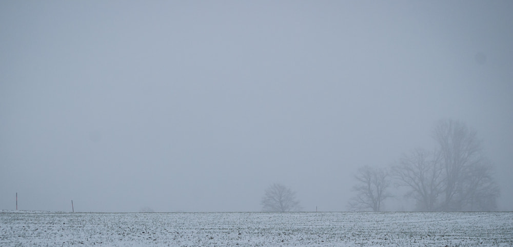 Photograph Snowy, sad winter #3 by Emanuel Dirschedl on 500px
