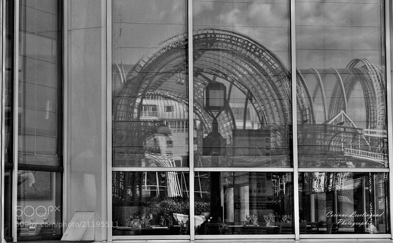 Photograph Les Milles facettes... by corinne Lesclingand on 500px
