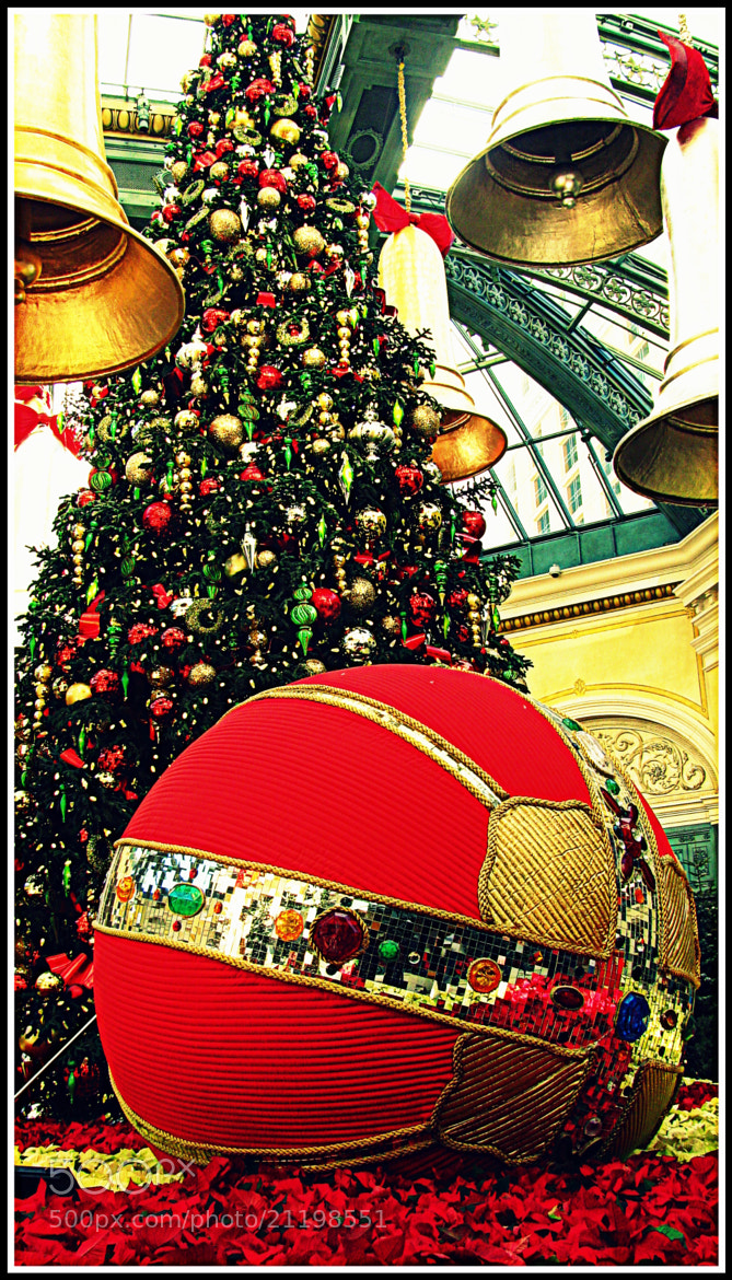 Photograph Christmas Decorations at Bellagio, Las Vegas by Chetan Sandhir on 500px