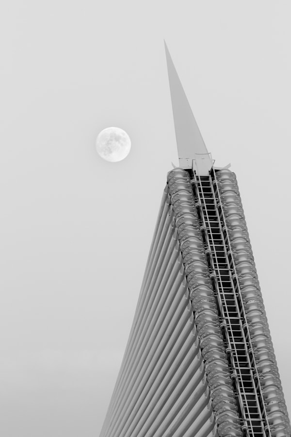 MAM Moon