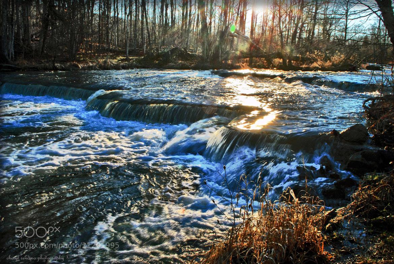 Photograph Morning Light by cheryl rendino on 500px