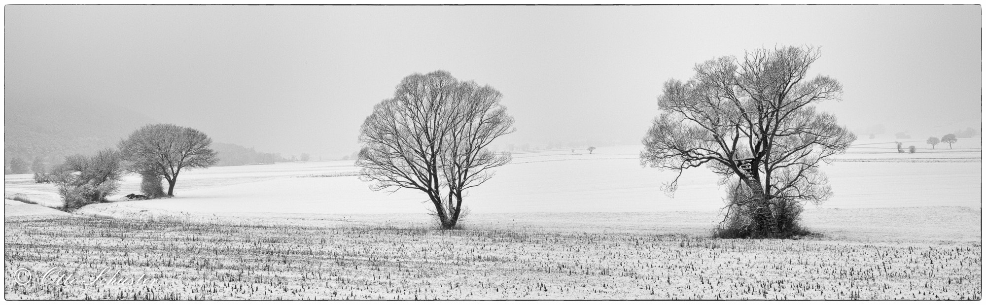 Photograph First Snow by Otto Schuster on 500px