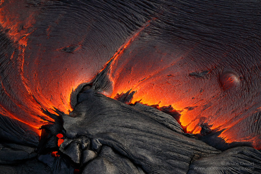 Wild Abstract by Bruce Omori on 500px.com