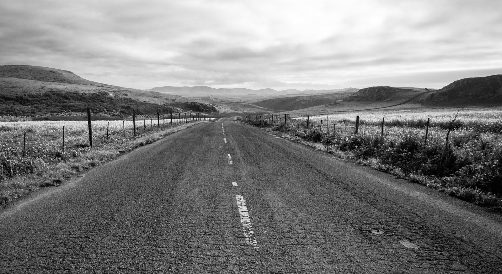 Photograph On the Road, Point Reyes by Rich Shelton on 500px