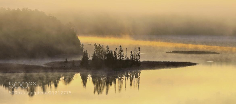 Photograph Foggy Morning Sunrise. by Ed Hall on 500px