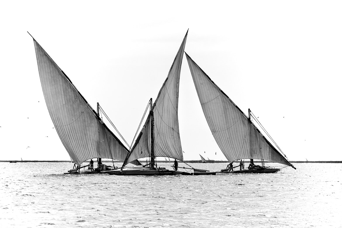 Photograph boat felucca photo by Ahmed Saad on 500px