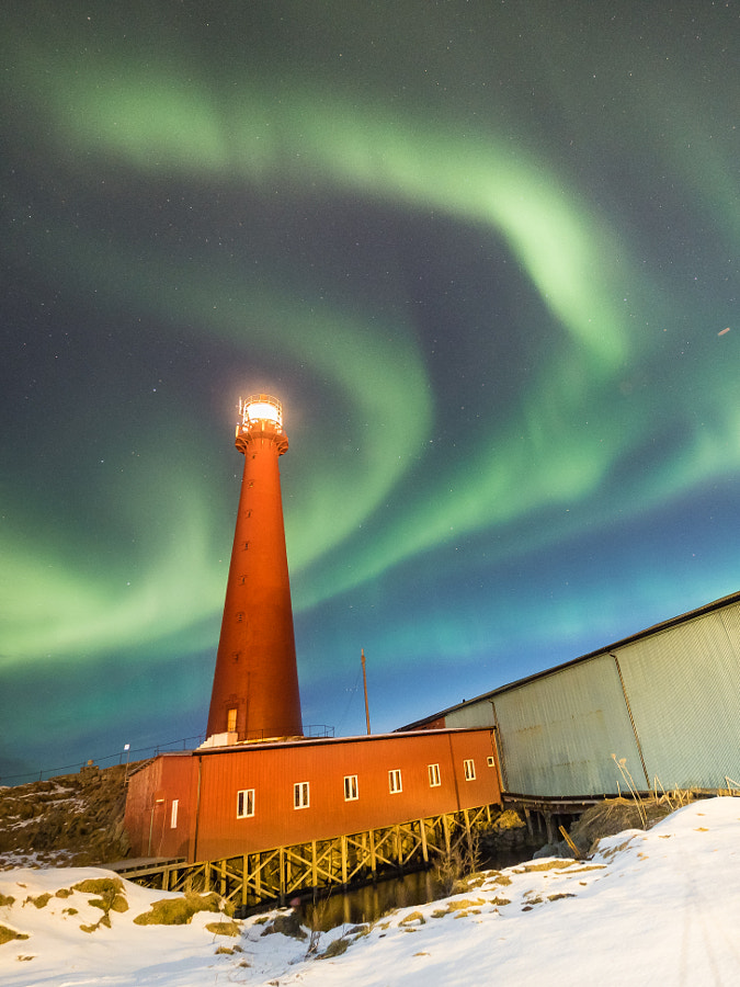 Northern Lights in Andenes by Alex Conu on 500px.com