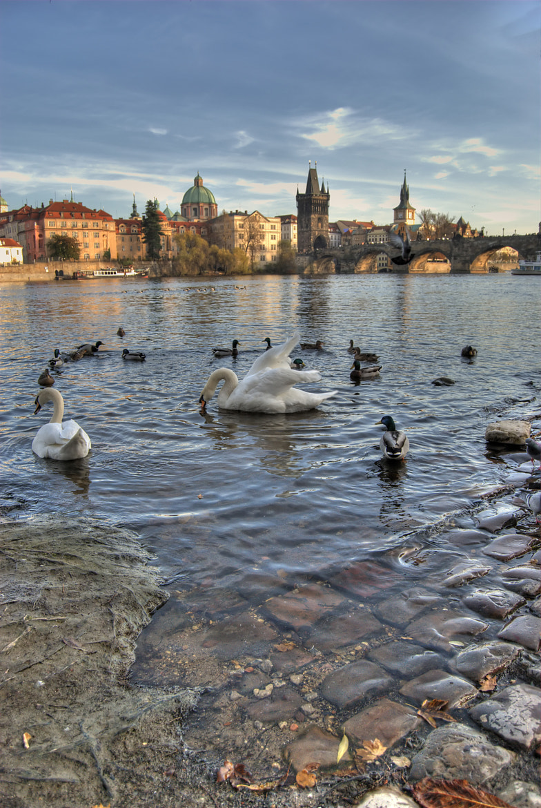 Photograph Charles Bridge. by Vicente Rubio Morant on 500px
