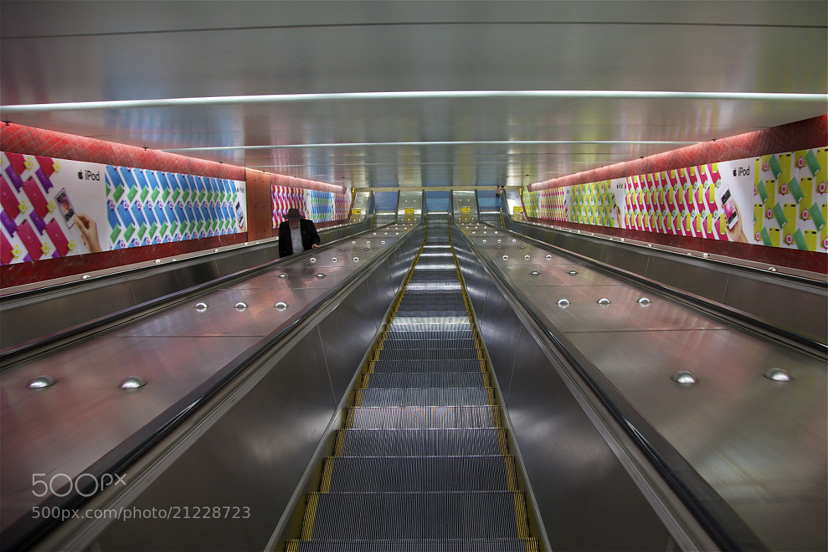 Photograph Up and Down by john spies on 500px