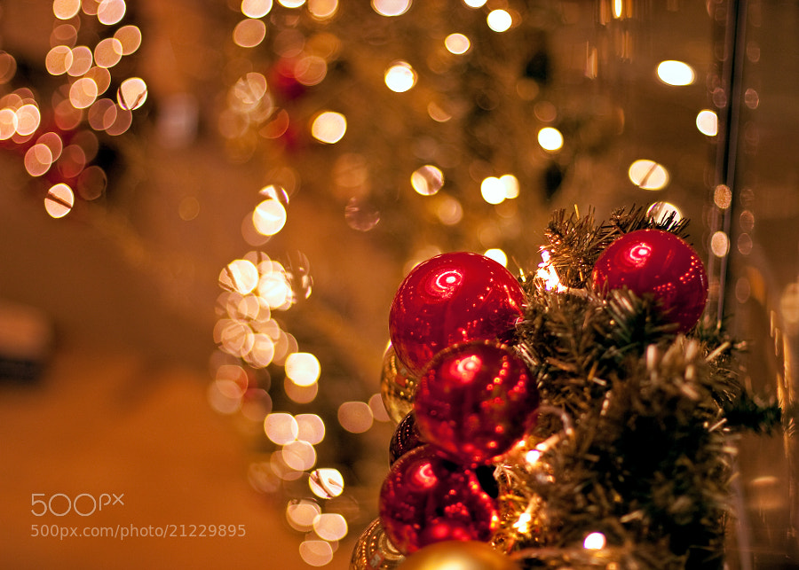 Photograph X-mas is coming! by Team B&K on 500px