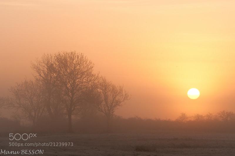 Photograph Lever de soleil by Manu BESSON on 500px