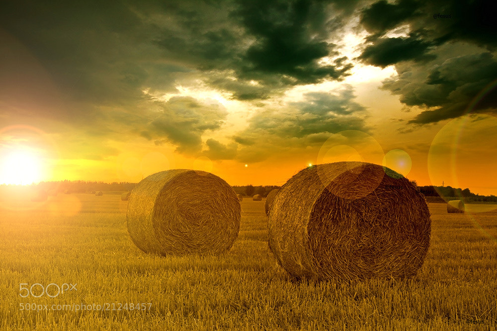 Photograph End of day over field with hay bale by F Levente on 500px