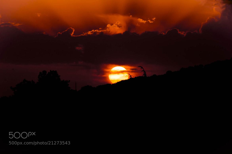 Photograph Orangeade...  by Aline -L on 500px