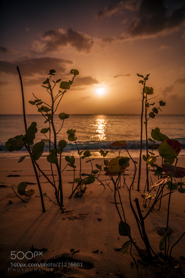 Photograph sunset at Holetown II by Marco Baum on 500px