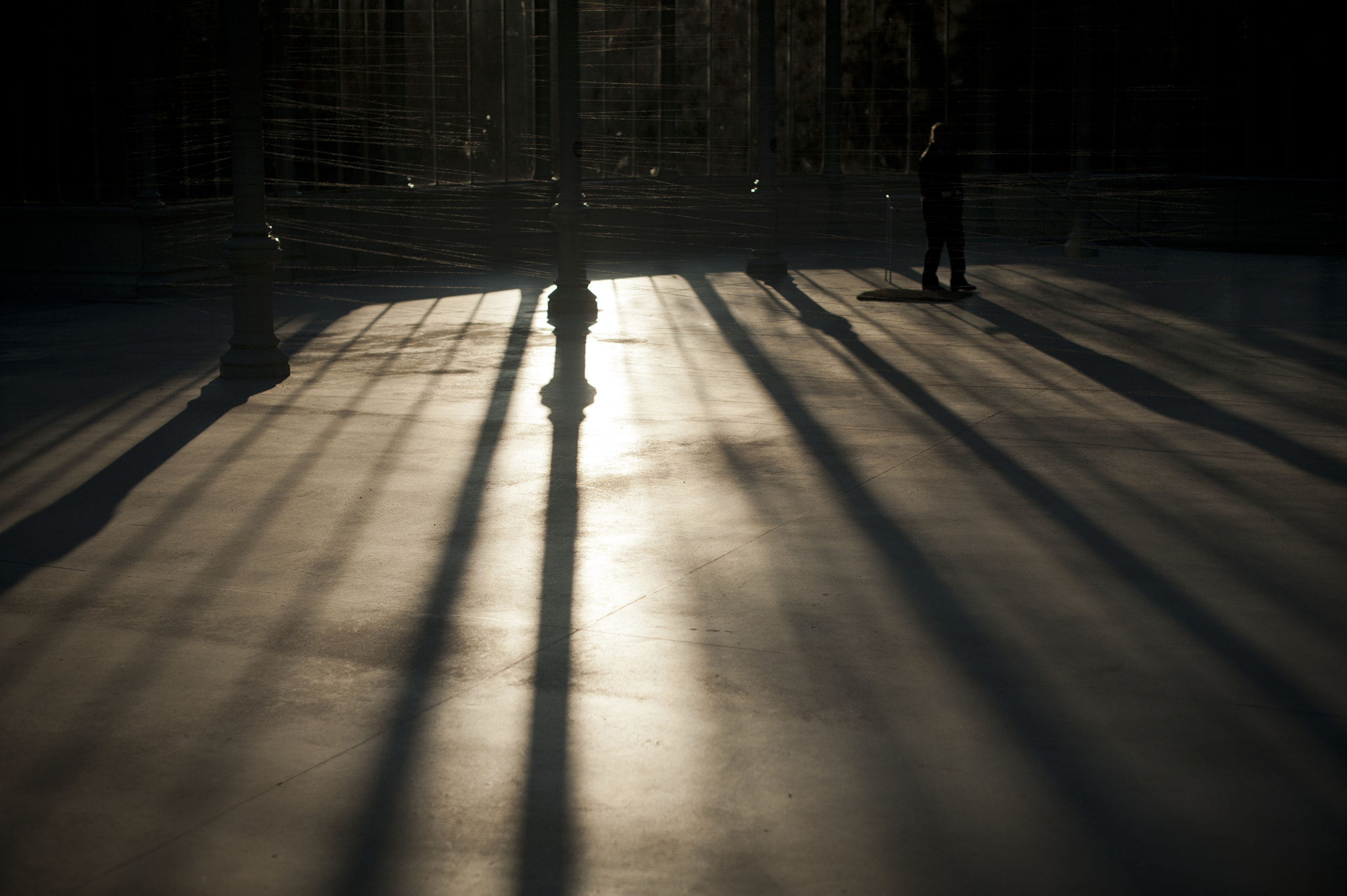 Photograph Shadows in the glass palace by Juan  Peña on 500px