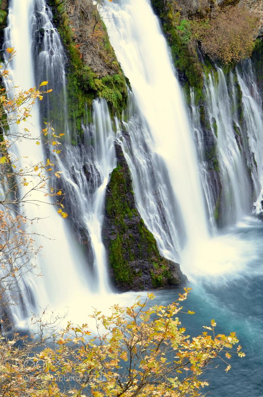 Photograph McCathy Burney Falls, CA by Senthil Balakrishnan on 500px