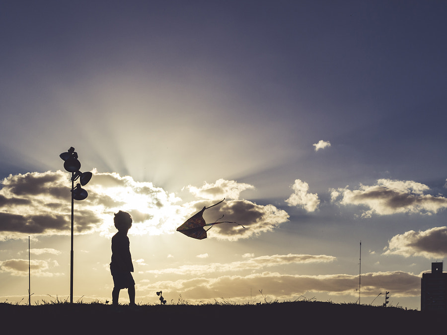 The child and the kite.