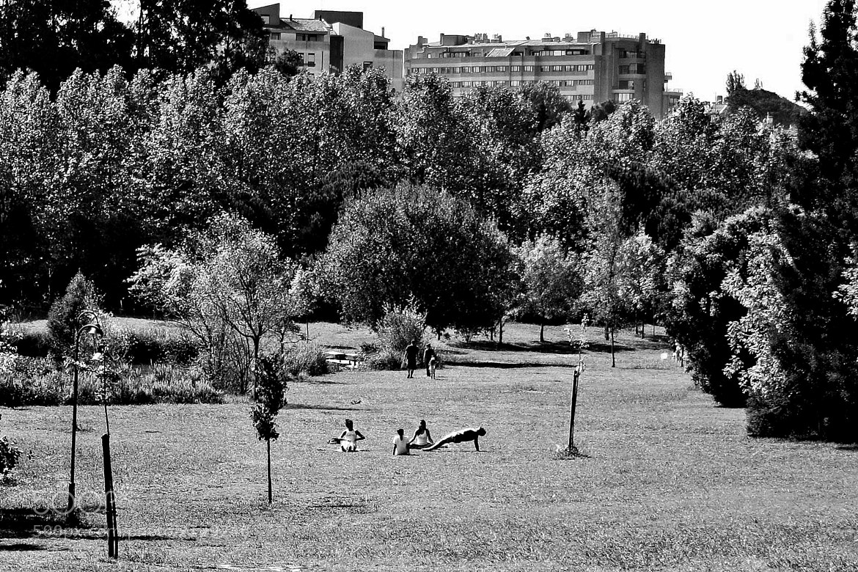 Photograph Urbanoids IX by Nuno Monteiro on 500px