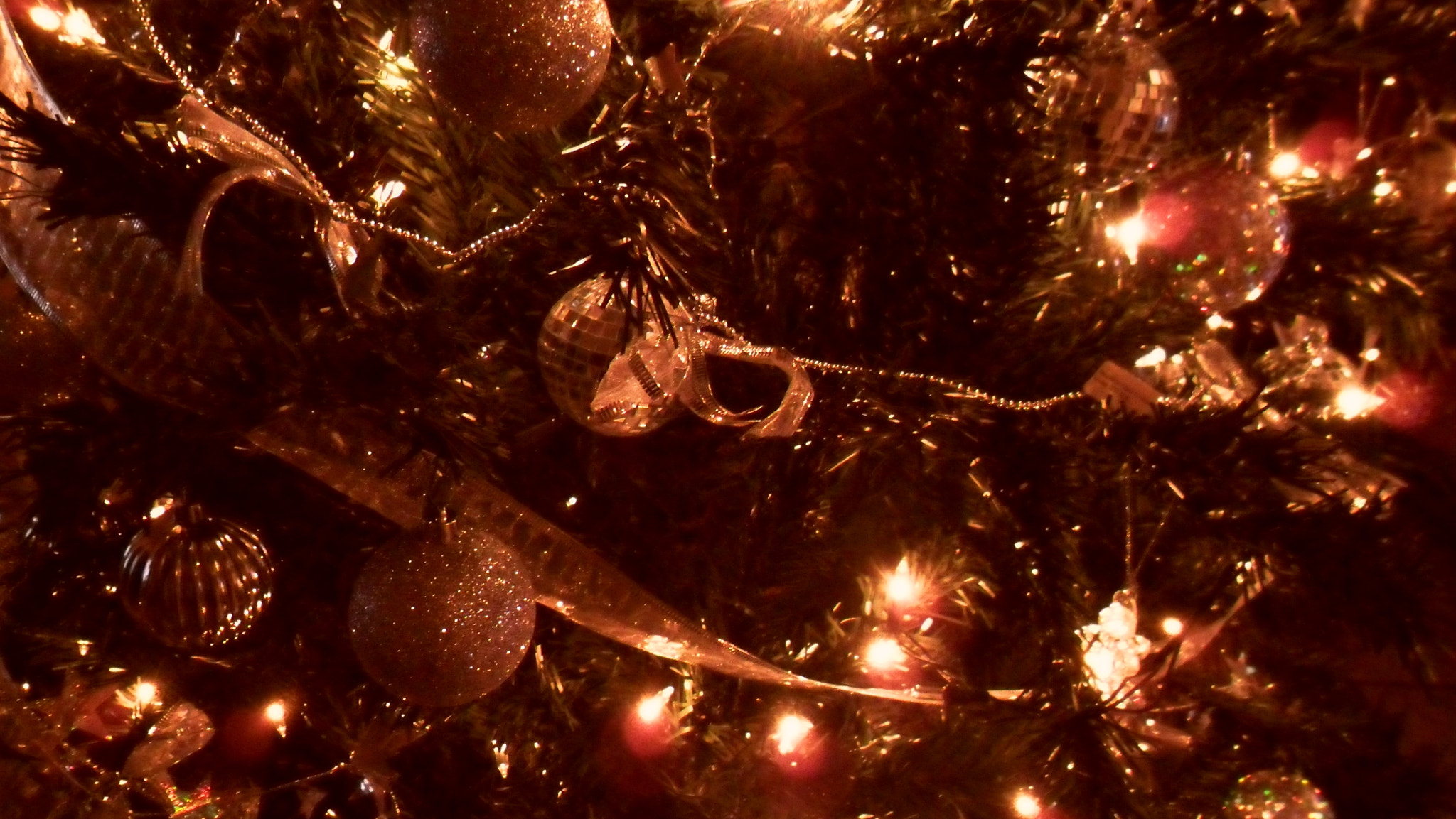 Photograph My Christmas Tree by Lilian de Oliveira on 500px