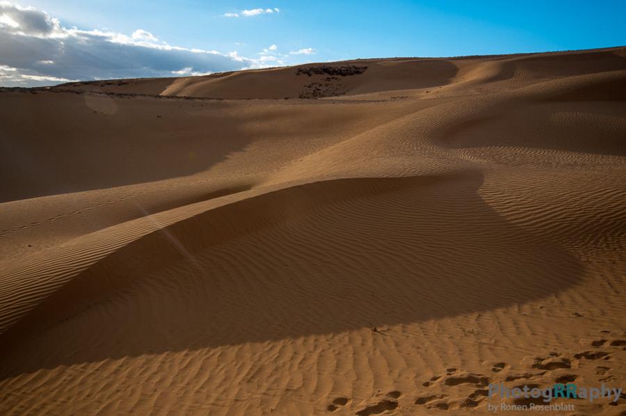 Desert's Sands
