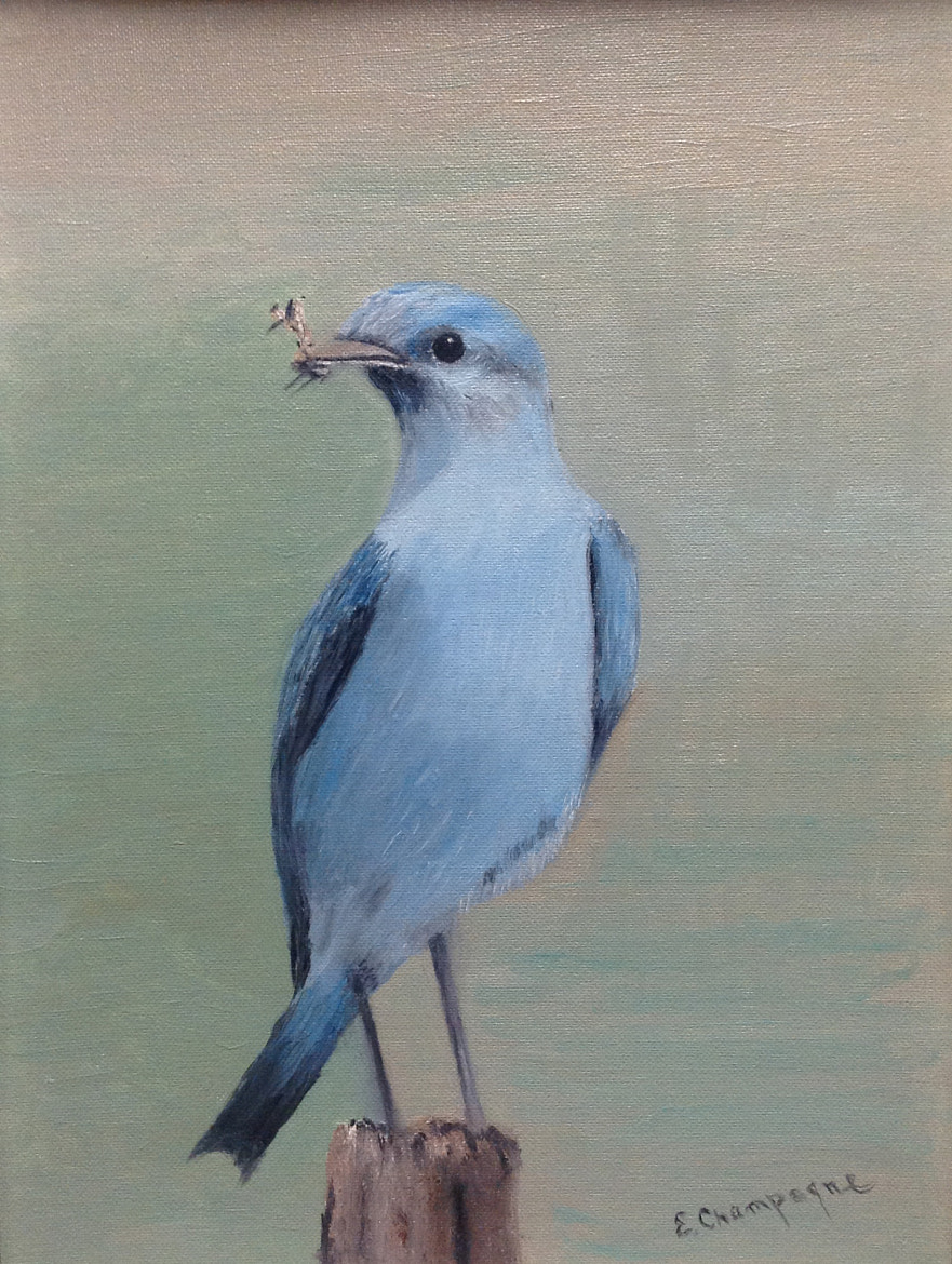 Photograph Blue Bird Oil Painting by Gary Labelle on 500px