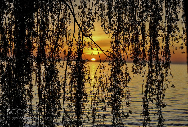 Photograph SunRise by Ed Hall on 500px