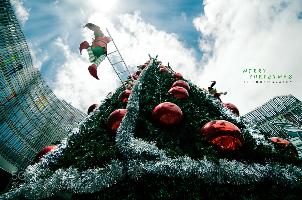 Photograph Merry Xmas 2012! by Tony Lim on 500px